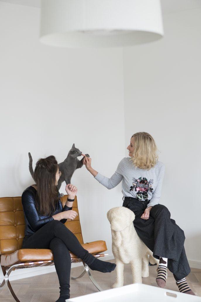 Hundebetreuung Katzenbetreuung Tiersitter